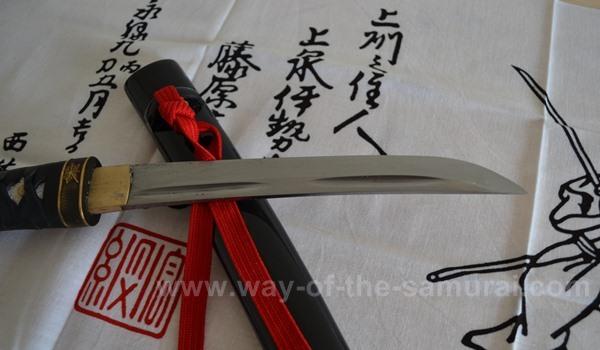 Masahiro Tanto Review Blade